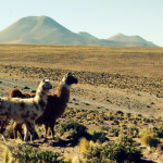 Photo of the Day: The Atacama Desert, Chile