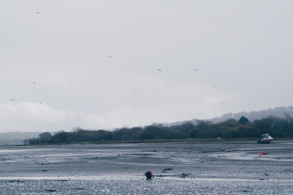 Pembrokeshire Coast National Park, newport sands pembrokeshire, mewport pembrokeshire, beaches wales