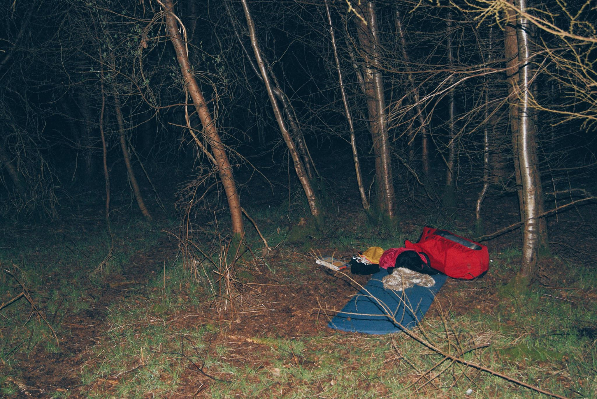 camping in the woods at night. Perfect Woods Wild Camping England Adventure Uk Uk In Camping The Woods At Night