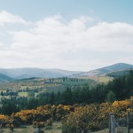 County Wicklow Photos: Snapshots of The Garden of Ireland