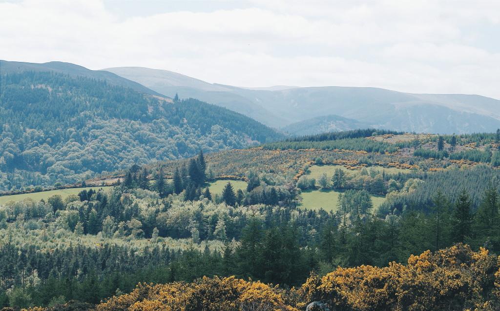 county wicklow photos, wicklow photography, the garden of ireland