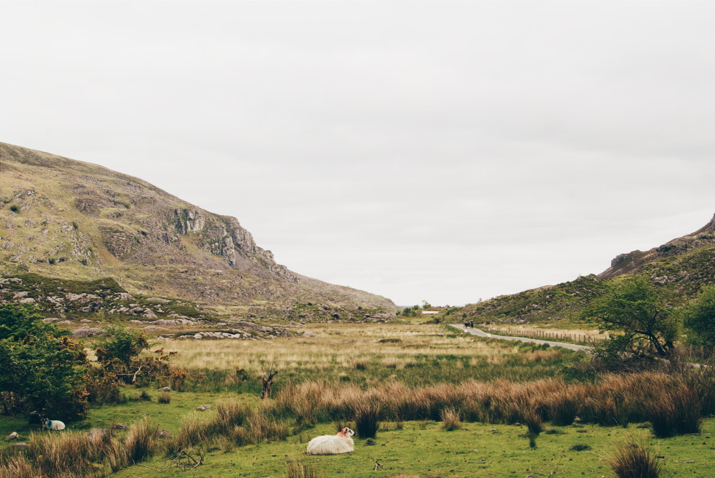 killarney national park, the gap of dunloe, ireland countryside