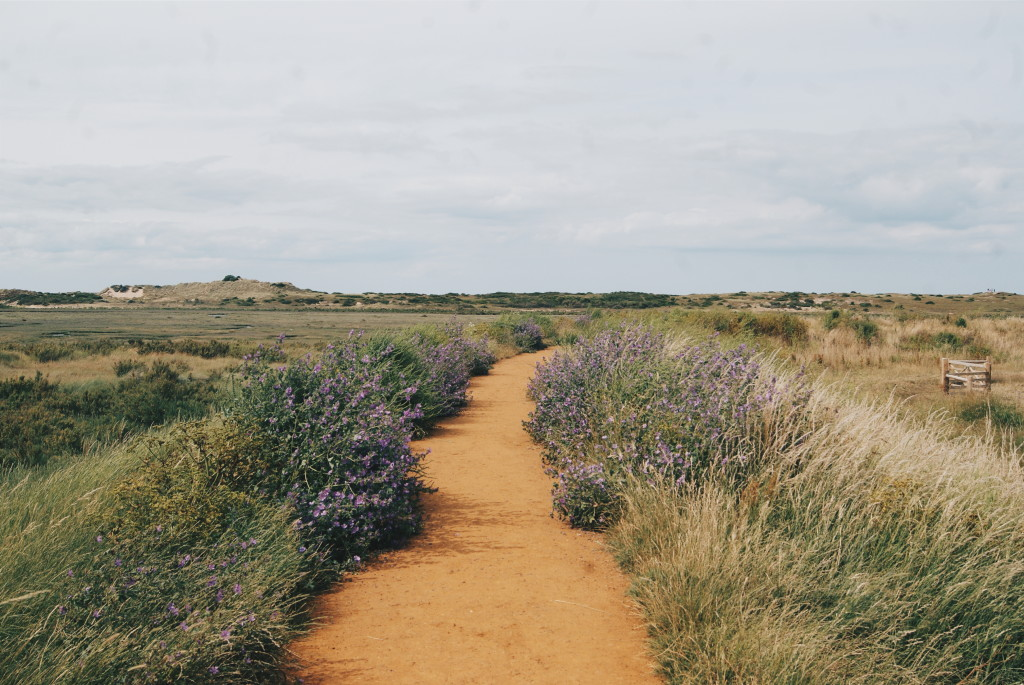 burnham overy staithe, wild camping in norfolk, beaches norfolk