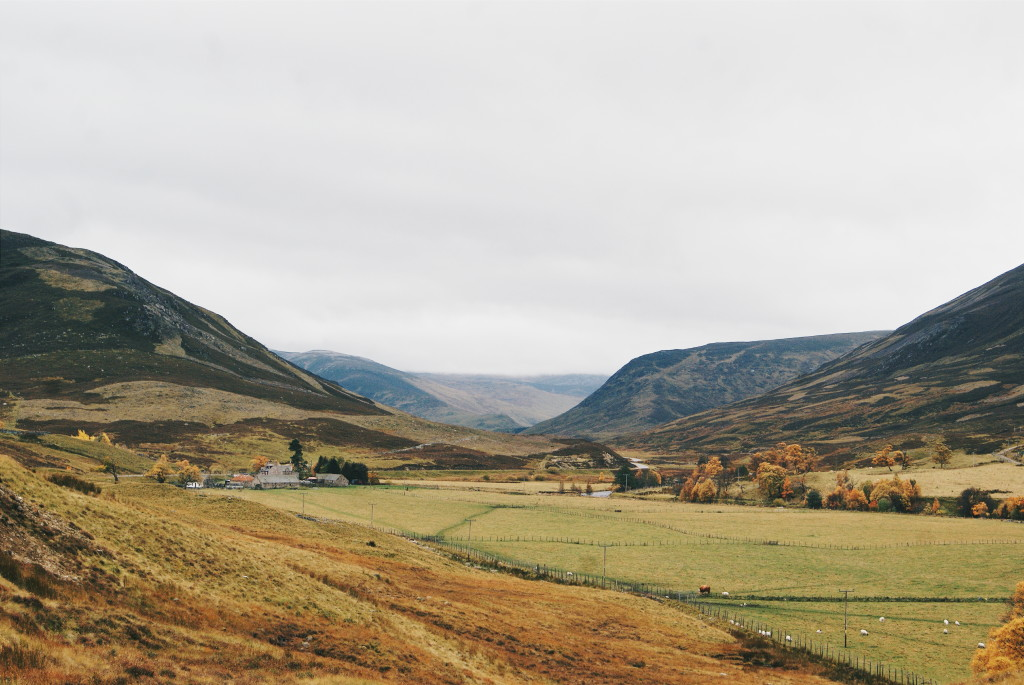 cairngorms national park in autumn, glen clova, angus glens