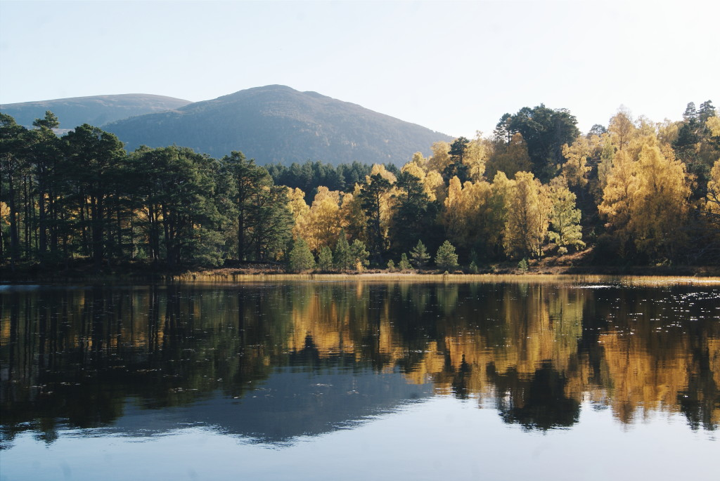 cairngorms national park photos, cairngorms national park in autumn, loch an eilein