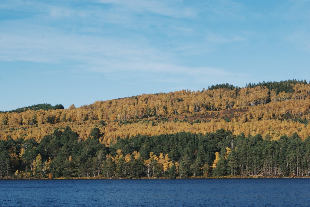 cairngorms national park in autumn, scotland autumn, cairngorms national park photos