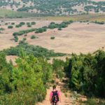 Alentejo Hiking: Taking on Portugal's Serra D'Ossa