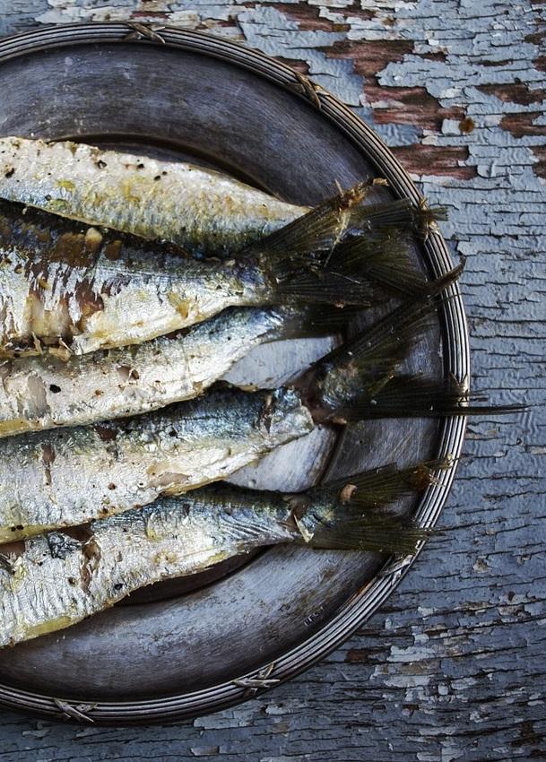 sardines-1489630_1280 - Copy
