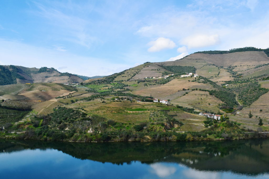 things to do in the douro, douro guide, douro without wine