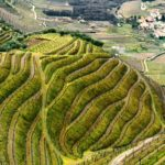 Travel itinerary: a weekend in the Douro, Portugal
