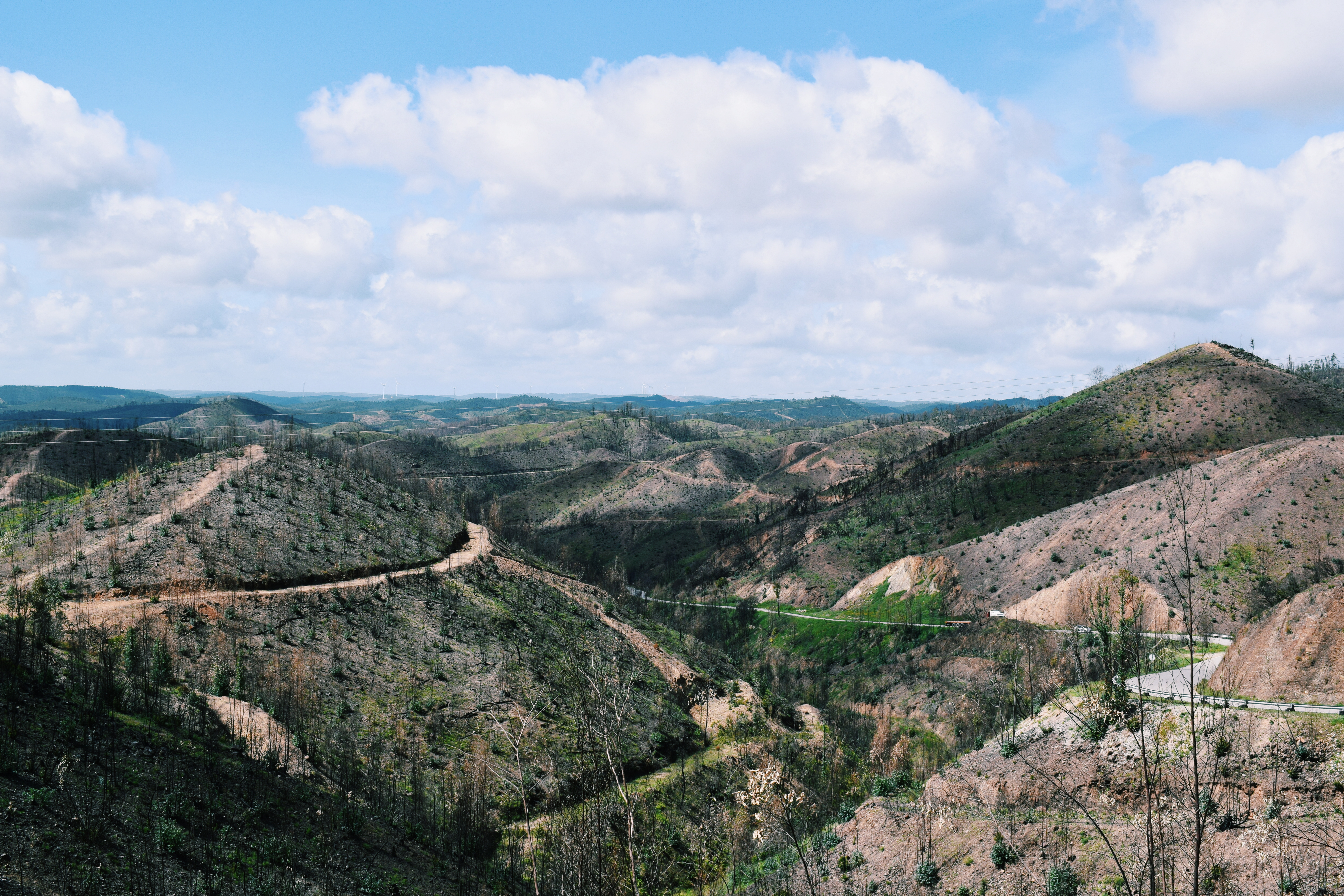 a year in portugal, indie travel magazine, portugal travel writing
